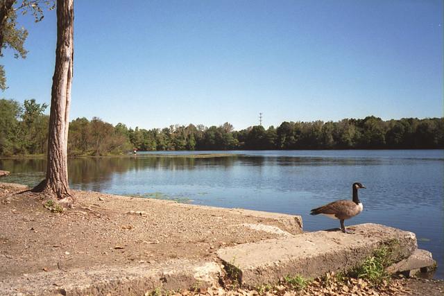 Woodland Lake, Pequannock NJ USA
