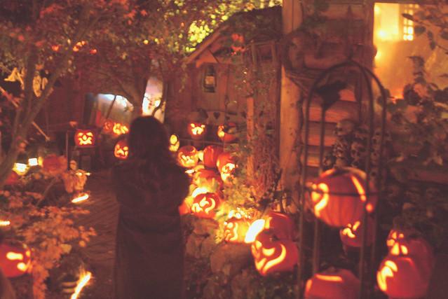 c'est l'halloween.