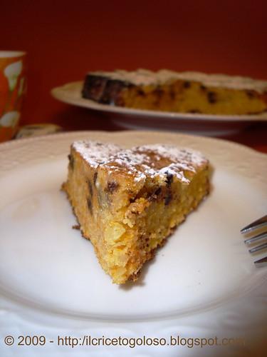 Torta di zucca con gocce di cioccolato (2)