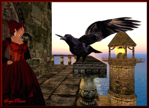 ~@~ Dialogue with a mystic Raven ~@~