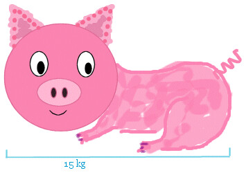 whole piggy by TS