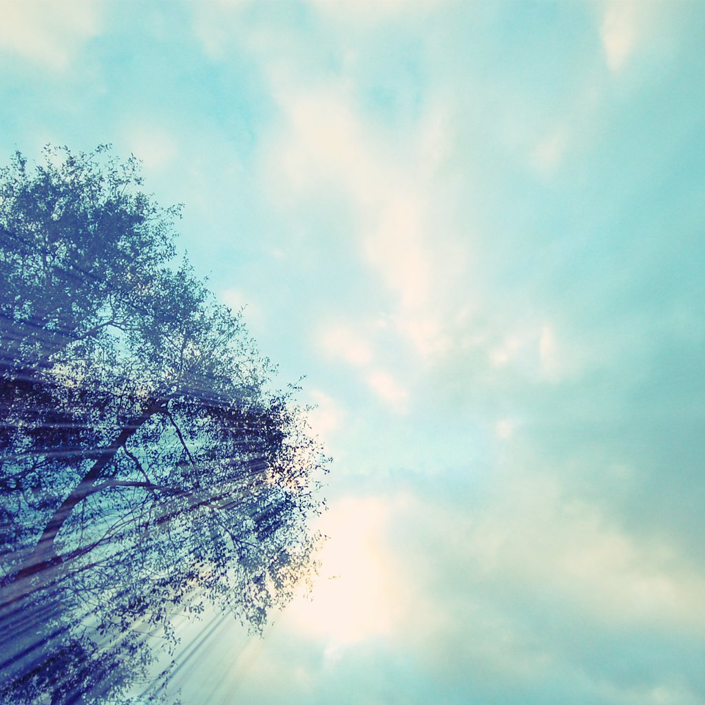 { 7 } sky