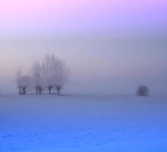 Foggy Winter Landscape at Sunset (Tobi_2008) Tags: schnee winter sunset sky snow color tree nature clouds germany landscape deutschland sonnenuntergang saxony natur himmel wolken ciel sachsen tobi landschaft farbe allemagne soe baum shiningstar germania cubism naturesfinest blueribbonwinner colorphotoaward ysplix diamondstars overtheexcellence colourartaward artlegacy theperfectphotographer mallmix goldstaraward multimegashot rubyphotographer megatopofthefog colorfullaward grouptripod mygearandmepremium mygearandmebronze mygearandmesilver mygearandmegold mygearandmeplatinum mygearandmediamond