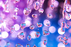 We're all addicted to water. (laurenelizabeth :)) Tags: blue white reflection water catchycolors nikon purple bokeh bubbles drop drip