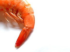 Shrimp tail (Bo 61) Tags: red sea animal tail alien crab shrimp 1on1 twtme aplusphoto