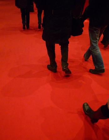 8_février_2009_tapis_rouge_P1010729