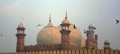 Frozen (U(v)a|r) Tags: pakistan pigeon minaret pigeons mosque lahore baadshahi