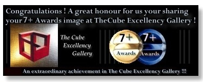 cube-7award-blackdouble