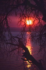 SLOW BURN (Krieger Conradt) Tags: sunset landscape malawi lakemalawi monkeybay otw mybestphotos bej abigfave skycloudssun multimegashot rubyphotographer thenewselectbest worldclassnaturephotos flickrenvythebesttm