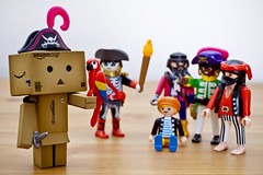 Danbo the Unconvincing Pirate! (snowingindoors) Tags: toy japanese 50mm robot dof character manga knife sigma parrot cardboard pirate captain swords playmobil cardboardboxes yotsuba danbo amazoncojp ghostpirate cabinboy pirategang meanpirates teasingdanbo