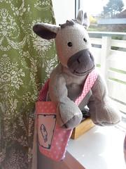 Wonky Donkey tote