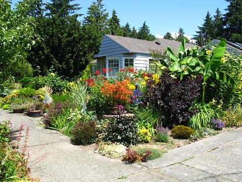 Ciscoe Morris' front yard garden