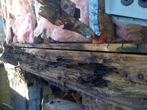 Lots of rot in the rim joist, but our builder can fix it! :)