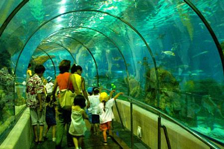 l'aquarium-de-barcelona-2
