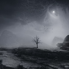 In Dark Places (Midnight - Digital) Tags: light moon tree rock mystery night dark square landscape death alone atmosphere dry eerie canyon creepy fullmoon spooky mysterious mystical sorrow deserted arid mystic eternal desolated crimsonglory