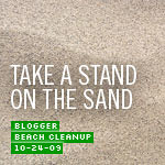 Blogger Beach Cleanup