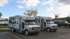 First Transit New 2008 Ford paratransit buses. Glenview Illinois. October 2008.