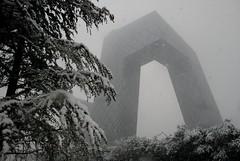 Snowy CCTV (NowJustNic) Tags: china snowflake snow building tree architecture grey nikon beijing cctv remkoolhaas snowing d80 guanghualu nikkor18135mm
