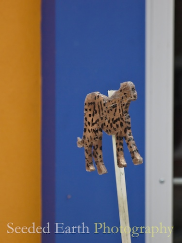 Now Can You See the Leopard on the Stick?