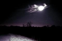 January's Wolf Moon (deepintheforestcat) Tags: nightphotography fullmoon unusualcloudformation starrynightsky ozziesfluffyears januaryswolfmoon moonwithears nophotoshopusedtruephoto