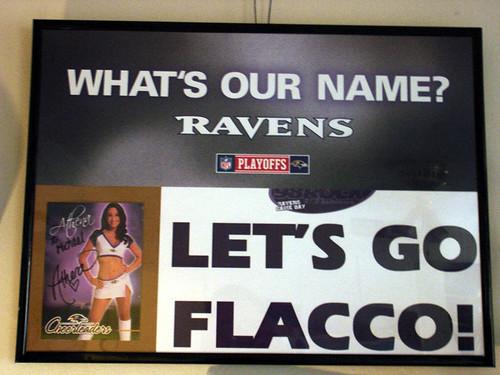 Ravens Project