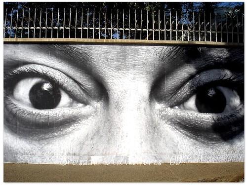 WW big eyes