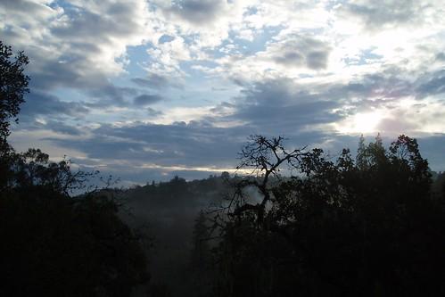 Edgewood Sky 01
