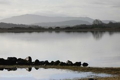 Lakescape (Omnishots.) Tags: ireland mayo soe ineffable loughconn shieldofexcellence absolutelystunningscapes