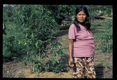 PERa068 (IWGIA) Tags: portrait woman peru persons ashaninka parellada