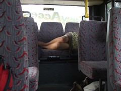 sleepy passenger on Helston bus