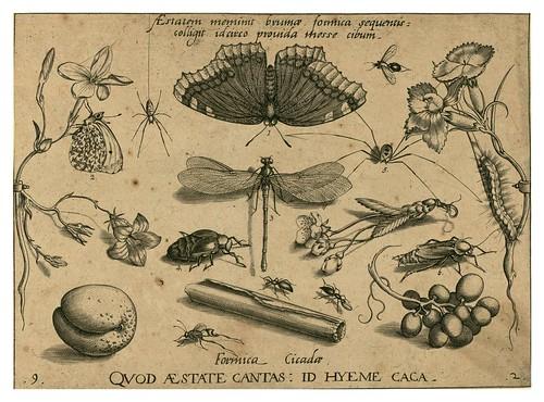 006-Archetypa studiaque patris 1592