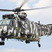 Sea King - RIAT 2009
