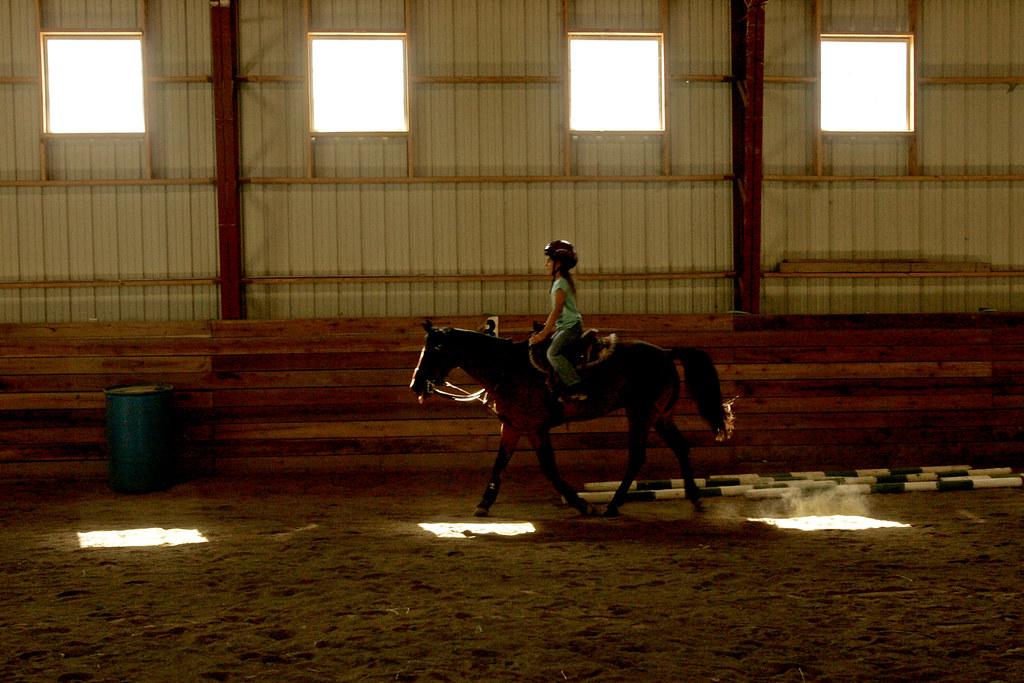 wildart_horse_km_02