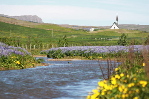 Iceland 0609_0030