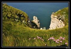 Normandie - Étretat (anico28) Tags: normandie falaise étretat