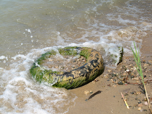 Tire on the Beach