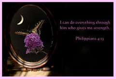 I Can Do Everything Through Him Who Gives Me Strength (honey 77) Tags: moon reflection nature butterfly mirror purple god jesus lord strength inspirational swallowtail butterflybush bibleverse fllower