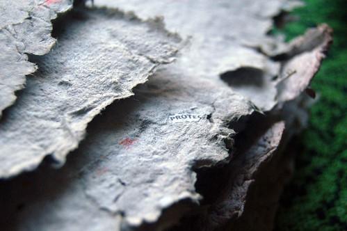 junkmailpaper02