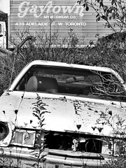 (Jay Morrison) Tags: ontario cars metal rust decay automotive junkyard scrapyard autowreckers mcleans jaymorrison