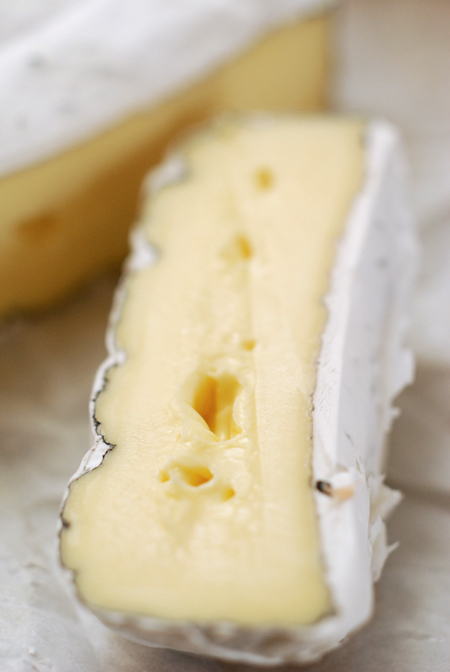 king island discovery ash brie© by Haalo