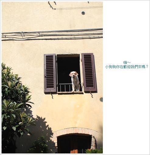 2010-08-12 10-01-07 Day5 S Gimignano_0159 f