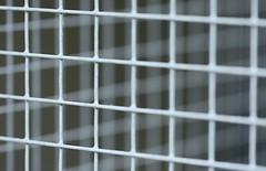 Squares. (Dikke Biggie.) Tags: closeup canon square dof squares 100mm f28 hek leidschendam hekwerk hff vierkantjes vierkanten dorrepaal dgawc happyfencedfriday