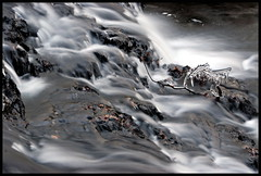 mystic water #1 (ludwig van standard lamp) Tags: longexposure winter nature water wales river waterfall pond stream exposure time walk cymru falls creativecommons timer liquid cwm llanbedr turbidity nantcol cascaid mysticwater