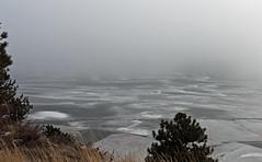 Evidince of Winter (jaxxon) Tags: trees winter blackandwhite bw lake snow cold ice nature fog canon rockies grey frozen colorado gray nederland rockymountains gloom desaturated g6 icy frozenover muted powershotg6 canonpowershotg6 reservoire bouldercounty jaxxon jackcarson desklickr nederlandco jacksoncarson jacksondcarson