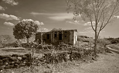 Abandoned Farm House In Rural Rajasthan In Monochrome Infrared (aeschylus18917) Tags: danielruyle aeschylus18917 danruyle druyle infrared scenery landscape surreal ir nikon d70 赤外線 nikond70 sky tree ダニエルルール ダニエル ルール infra red edit india rajasthan hilltribes poverty house farm abandoned homestead rural farmhouse 1870mmf3545gifdx nikkor1870f3545g nikkor1870f3545gdx blackandwhite monochrome 1870mm 1870f3545g nikkor 1870 f3545g pxi pxt