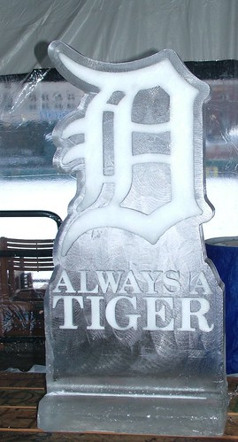 Always a tiger ice