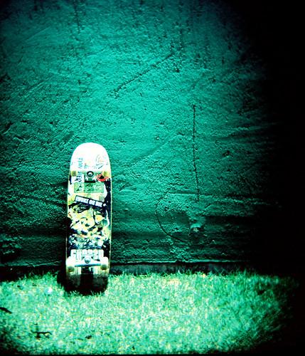 skate or die_lomo_holga