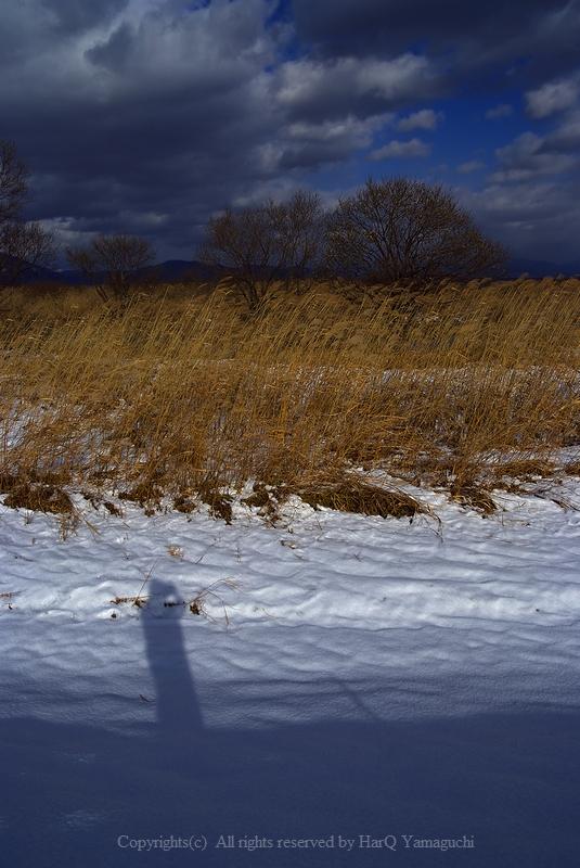 Self Shadow in Winter