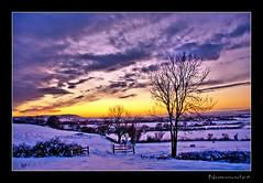Snowy Sunset. (numanoid69) Tags: uk winter sunset england snow cold landscape twilight dusk freezing gloucestershire supershot frocesterhill nikond300 prideofengland greatshotss