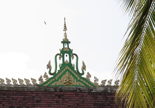 temple roof and bird